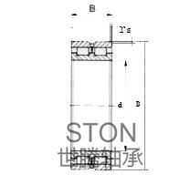 双列满装圆柱滚子轴承NNCL(SL02)